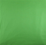 MUSLIN CLOTH BACKGROUND 3X6M PLAIN GREEN